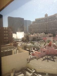 Flamingo View 2